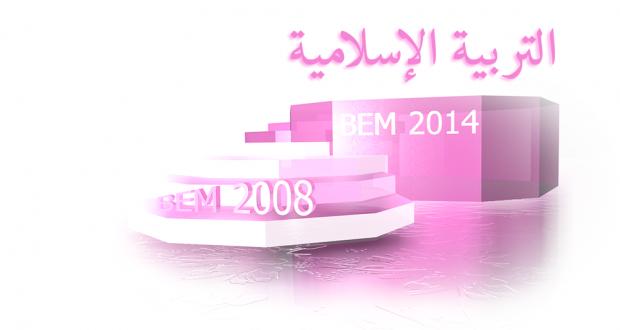 BEM2008
