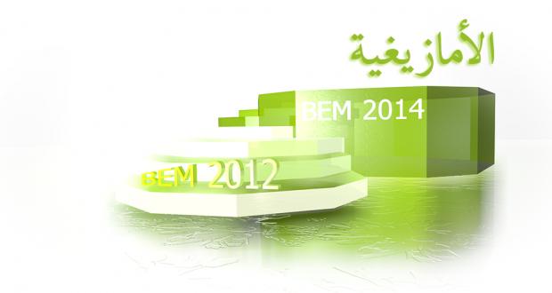 BEM2012